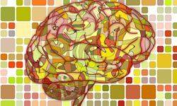 3 Ways Drug-Use Rewires Your Brain