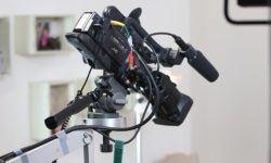 The Most Optimal Safari Cameras