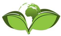 Eco-Friendly Technology Can Help In Many Different Aspects of Life