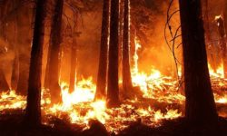 3 Ways Technology is Helping California Fight Wildfire